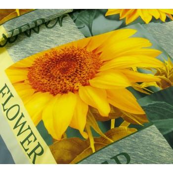КПБ Солнечный цветок
