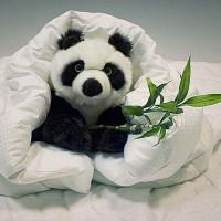 Каталог одеял